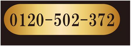 dg-32